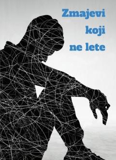 Knjiga Zmajevi koji ne lete - Ivana Šojat slika naslovnice